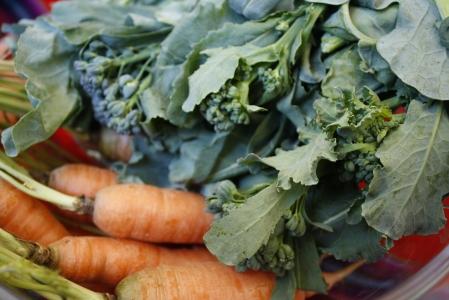 Cenouras e brócolis (foto: Felipe Obrer)